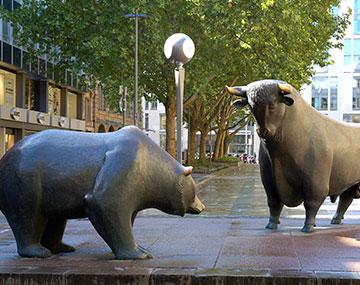 toro e orso